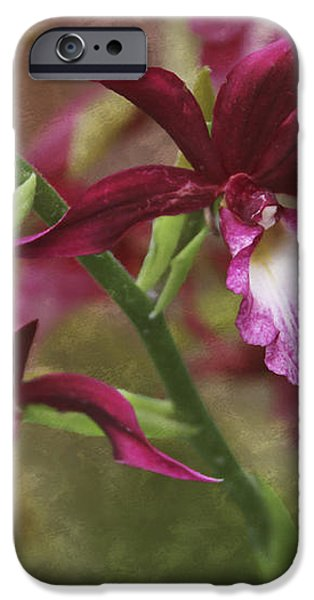 Tropical Beauty iPhone Case by Debra and Dave Vanderlaan