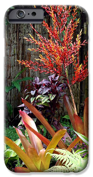 Bamboo Fence iPhone Cases - Tropical Garden iPhone Case by Karon Melillo DeVega