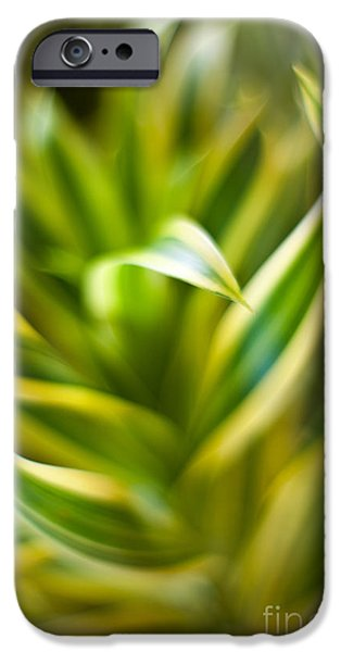 Tropical Plant iPhone Cases - Tropical Swirl iPhone Case by Mike Reid