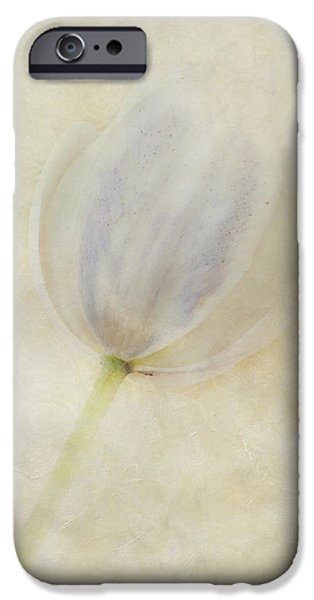 Flora iPhone Cases - Tulip 1 iPhone Case by Marion Galt