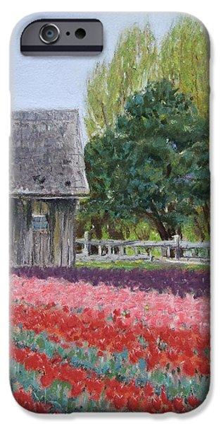 Barn Landscape Pastels iPhone Cases - Tulip Season iPhone Case by Marie-Claire Dole
