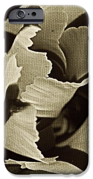 Tulip Whirled  iPhone Case by Chris Berry