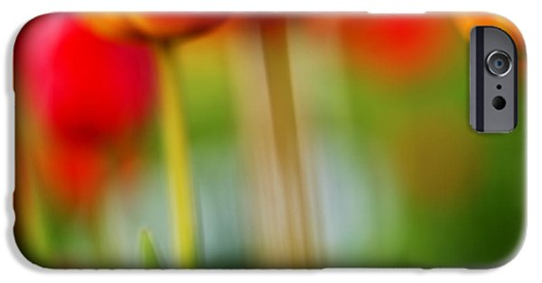 Close-up Photographs iPhone Cases - Tulips iPhone Case by Silke Magino