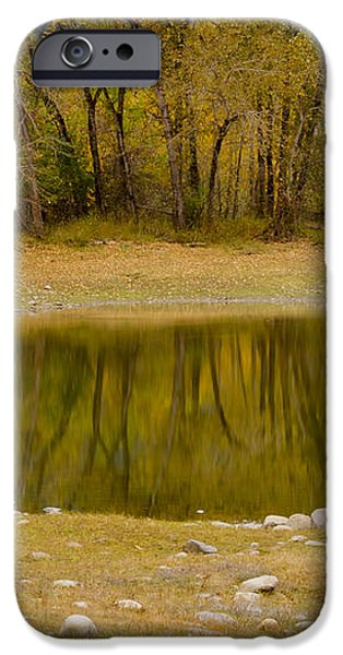 Tunnel Pond iPhone Case by Idaho Scenic Images Linda Lantzy