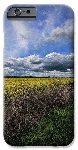 Field. Cloud iPhone Cases - Turnip Field II  iPhone Case by Bonnie Bruno