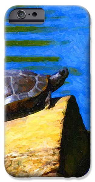 Turtle Basking In The Sun iPhone Case by Wingsdomain Art and Photography