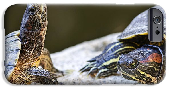 Slider Photographs iPhone Cases - Turtle conversation iPhone Case by Elena Elisseeva