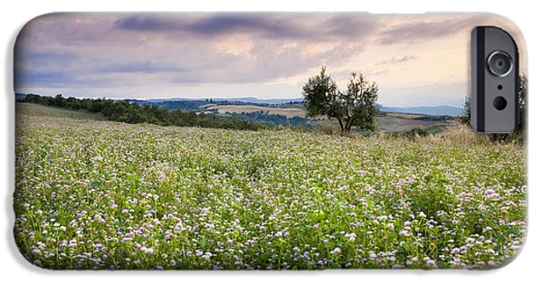 Tuscan Sunset iPhone Cases - Tuscany Flowers iPhone Case by Brian Jannsen