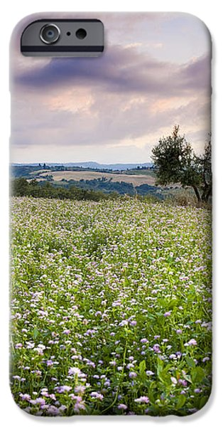Tuscany Flowers iPhone Case by Brian Jannsen