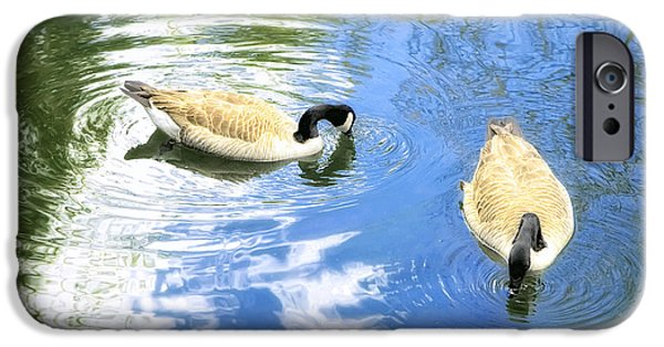 Geese iPhone Cases - Two Geese iPhone Case by Scott Norris