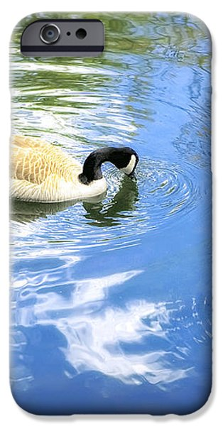 Two Geese iPhone Case by Scott Norris