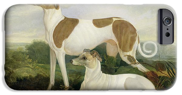 Greyhound Photographs iPhone Cases - Two Greyhounds in a Landscape iPhone Case by Charles Hancock
