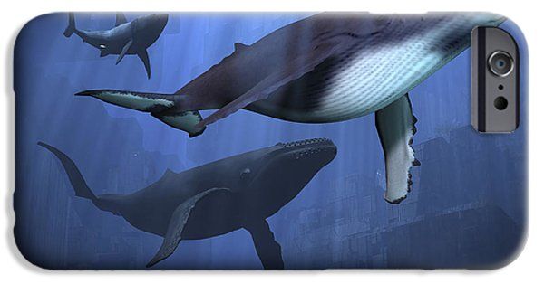 Shark iPhone Cases - Two Humpback Whales And A Shark Swim iPhone Case by Corey Ford