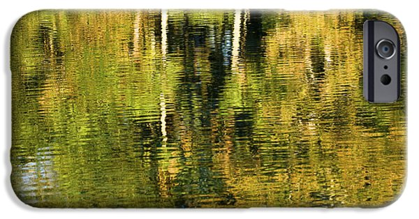 Reflecting Trees iPhone Cases - Two Palms Reflected In Water iPhone Case by Rich Franco