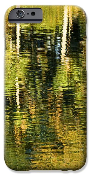 Two Palms Reflected In Water iPhone Case by Rich Franco