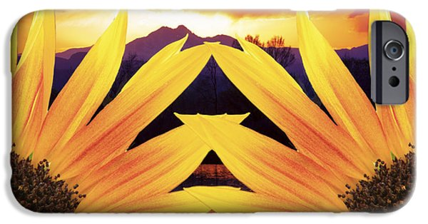 Sunflower Photograph iPhone Cases - Two Sunflower Sunset iPhone Case by James BO  Insogna