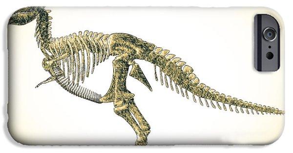 T Rex iPhone Cases - Tyrannosaurus Rex Skeleton iPhone Case by Bob Orsillo