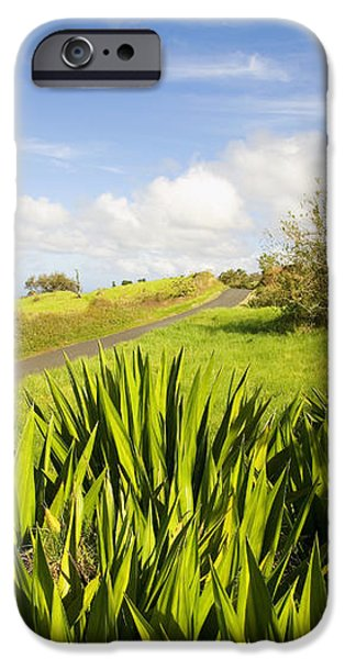 Ulupalakua Country Road iPhone Case by Ron Dahlquist - Printscapes