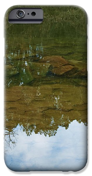 Underwater Landscape iPhone Case by Lisa Holmgreen