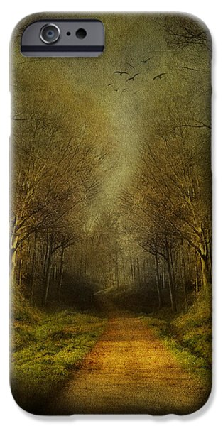 Forest Mixed Media iPhone Cases - Unknown Footpath iPhone Case by Svetlana Sewell