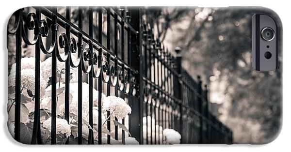 The White House Photographs iPhone Cases - Urban Beauty iPhone Case by Christina Klausen