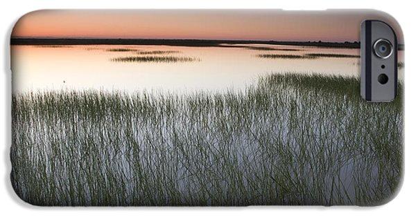 Solano iPhone Cases - Vernal Pool At Sunrise Jepson Prairie iPhone Case by Sebastian Kennerknecht