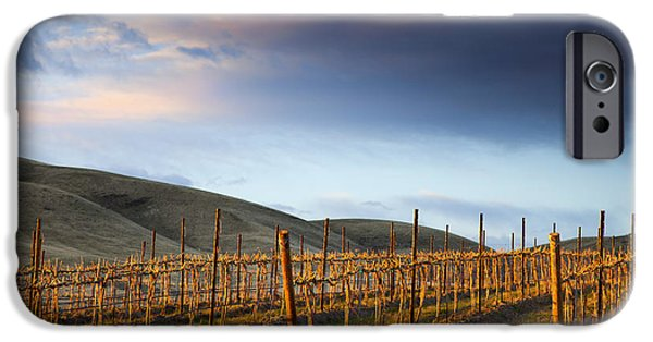 Yakima Valley iPhone Cases - Vineyard Storm iPhone Case by Mike  Dawson