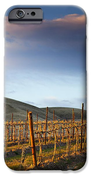 Vineyard Storm iPhone Case by Mike  Dawson