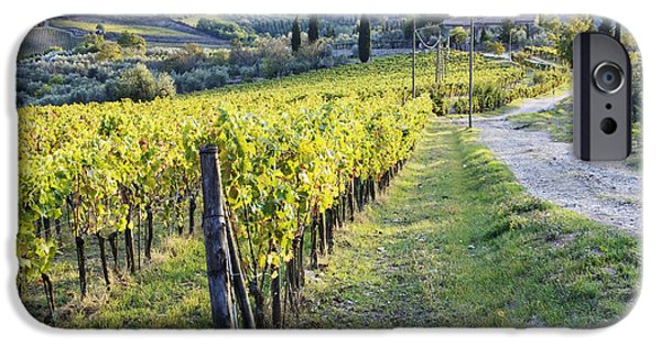 Chianti Landscape iPhone Cases - Vineyards and Farmhouse iPhone Case by Jeremy Woodhouse