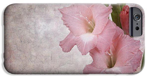 Gladiolas iPhone Cases - Vintage gladioli iPhone Case by Jane Rix