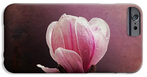Close Up Floral iPhone Cases - Vintage Magnolia iPhone Case by Jane Rix
