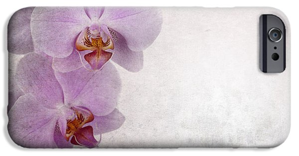 Close Up Floral iPhone Cases - Vintage orchids iPhone Case by Jane Rix