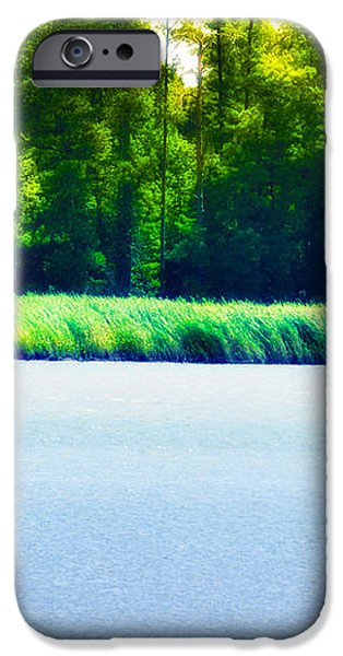 Virginia Tides iPhone Case by Bill Cannon