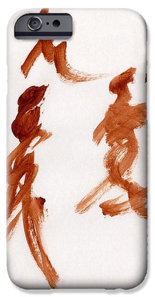Visual Discrimination  iPhone Case by Taylor Pam
