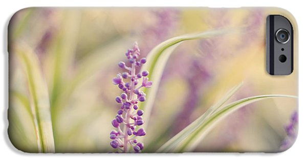 Soft Photographs iPhone Cases - Voices Carry iPhone Case by Amy Tyler
