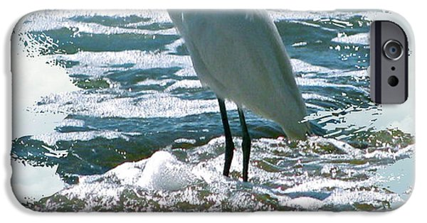Animal Photograph Mixed Media iPhone Cases - Wading In The Waves iPhone Case by Debra     Vatalaro