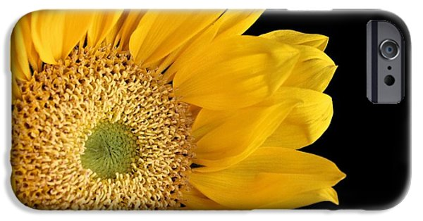 Sunflower Photograph iPhone Cases - Waking Up iPhone Case by Elizabeth Budd