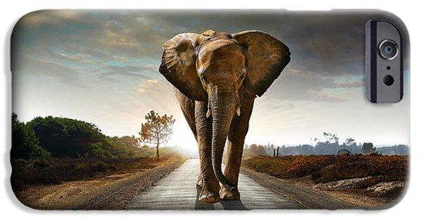Savannah iPhone Cases - Walking Elephant iPhone Case by Carlos Caetano