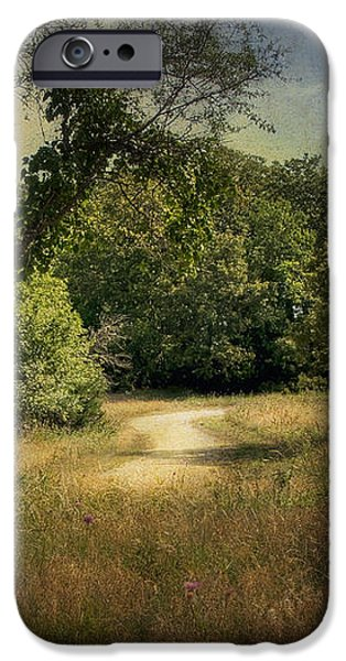 Wandering Path I iPhone Case by Tamyra Ayles