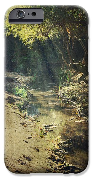 Creek iPhone Cases - Warm My Soul iPhone Case by Laurie Search