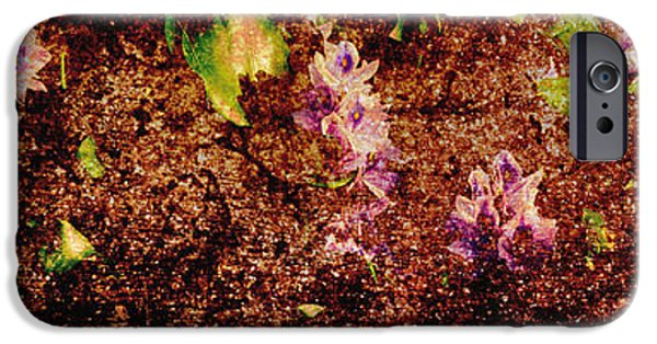Abstract Digital Photographs iPhone Cases - Water Flowers Vietnam iPhone Case by Skip Nall
