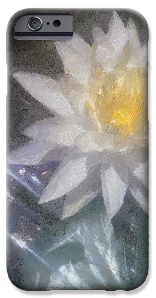Water Lily in Sunlight iPhone Case by Jeff Kolker