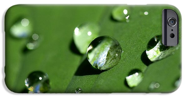 Solitude Photographs iPhone Cases - Waterdrops iPhone Case by Melanie Viola