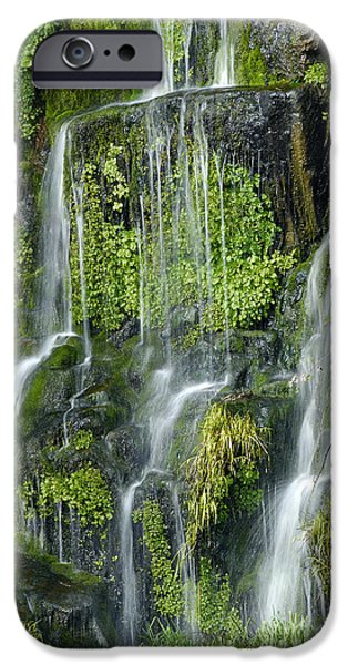 Watercress iPhone Cases - Waterfall at Columbia River Washington iPhone Case by Ted J Clutter and Photo Researchers