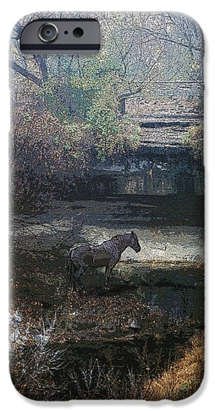 Horse iPhone Cases - Watering Hole iPhone Case by Jon Lord