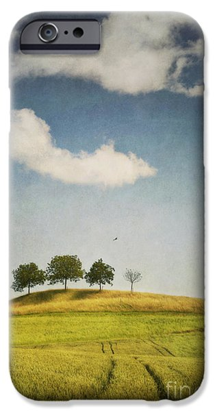 Meadow Photographs iPhone Cases - We Are 4 iPhone Case by Priska Wettstein