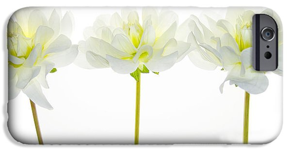 Trio Photographs iPhone Cases - We Glow iPhone Case by Rebecca Cozart