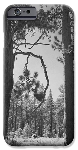 Lake Tahoe iPhone Cases - We Two iPhone Case by Laurie Search
