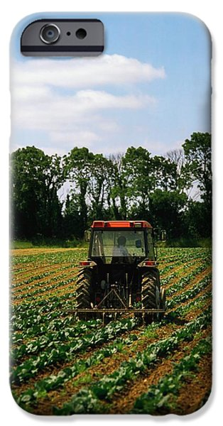 Backhoe iPhone Cases - Weeding A Cabbage Field, Ireland iPhone Case by The Irish Image Collection