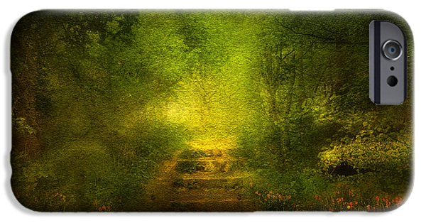 Fog Mist Mixed Media iPhone Cases - Welcome Path iPhone Case by Svetlana Sewell